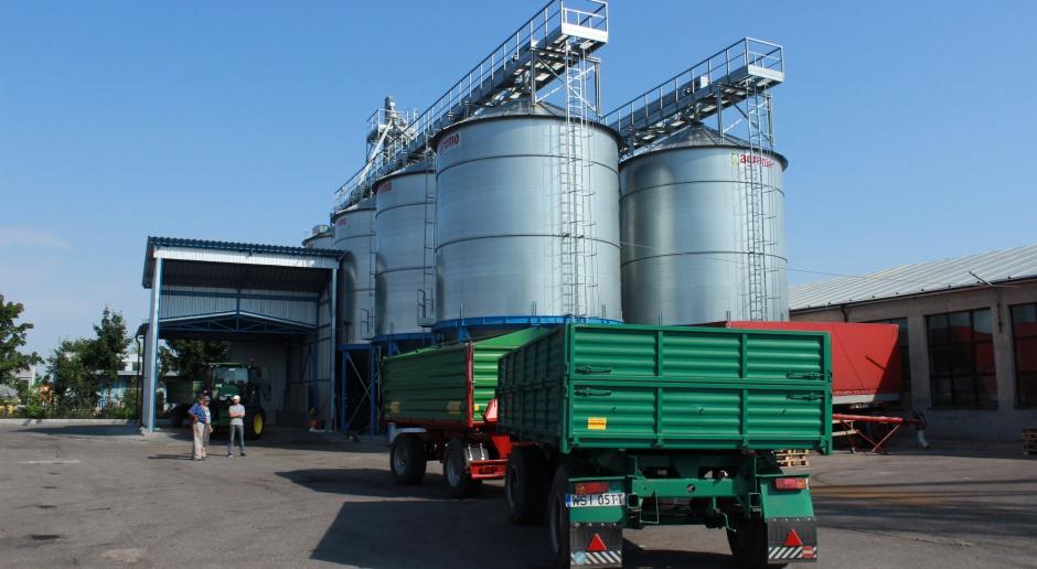 Przed raportem USDA większość zbóż tanieje