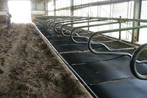 Chłodzące maty od GEA Farm