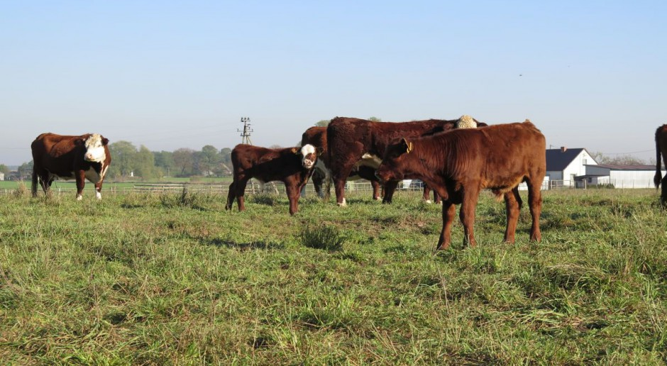 Kluby poparły ułatwienia dla rolników ekologicznych