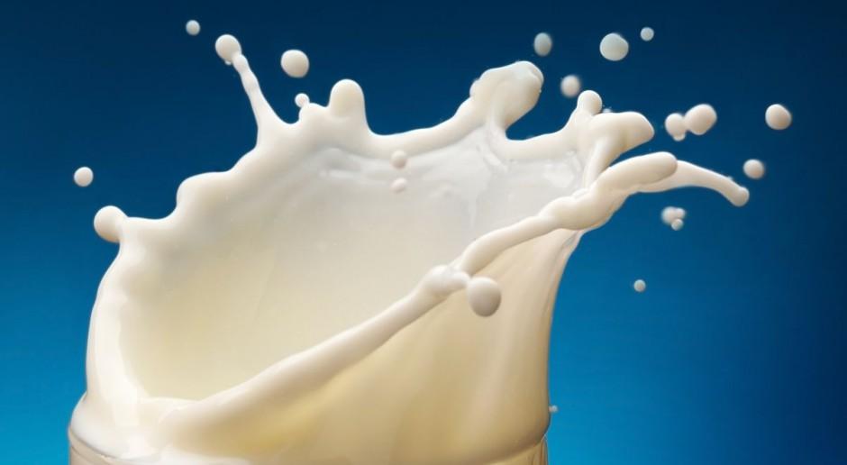 Plocke: raczej nie uda się uniknąć kar za nadprodukcję mleka