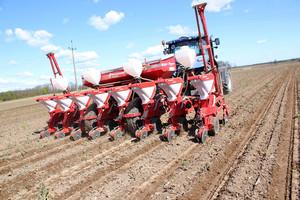 Najczęstsze błędy w uprawie kukurydzy