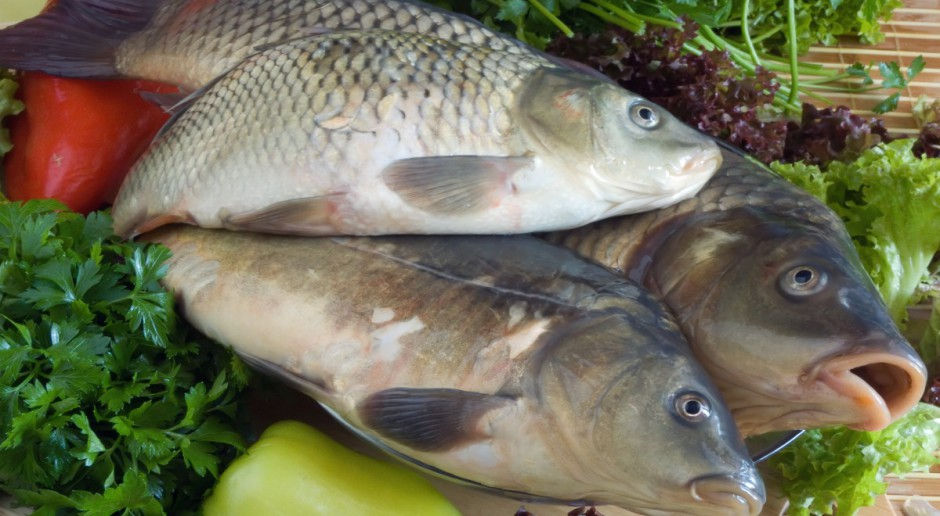 Producenci ryb nie chcą płacić za wodę