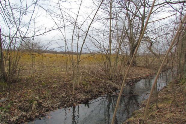 Grabowski: Za wodę zapłacą ci, którzy pogarszają jej stan