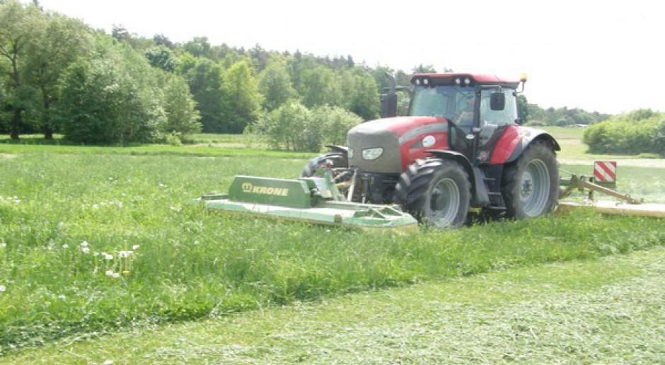 Nowe odmiany traw w rejestrze