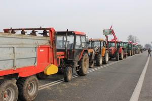 Protesty rolników w całej Polsce; blokady dróg i pikiety