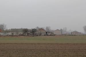 Sejmowa komisja rolnictwa chce zgłosić projekt ustawy o dzierżawie