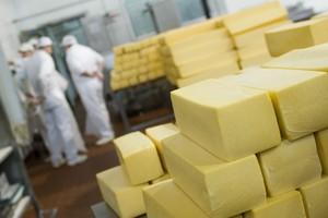 Zakaz importu wyrobów serowych i seropodobnych z Polski