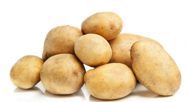 IERiGŻ: Polski eksport ziemniaków większy a import mniejszy niż przed rokiem