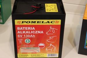 """""""Pastuch"""" z nową baterią"""