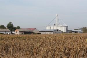Kiedy trzeba kontynuować stary program rolnośrodowiskowy?