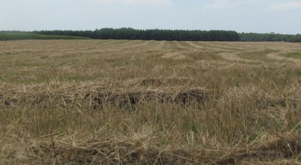Wyłączenie 30 proc. ziemi z dzierżaw znów potrzebne?
