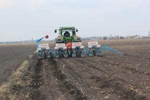 Warunki do siewu kukurydzy we Francji