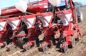 Nie śpieszmy się z siewem kukurydzy