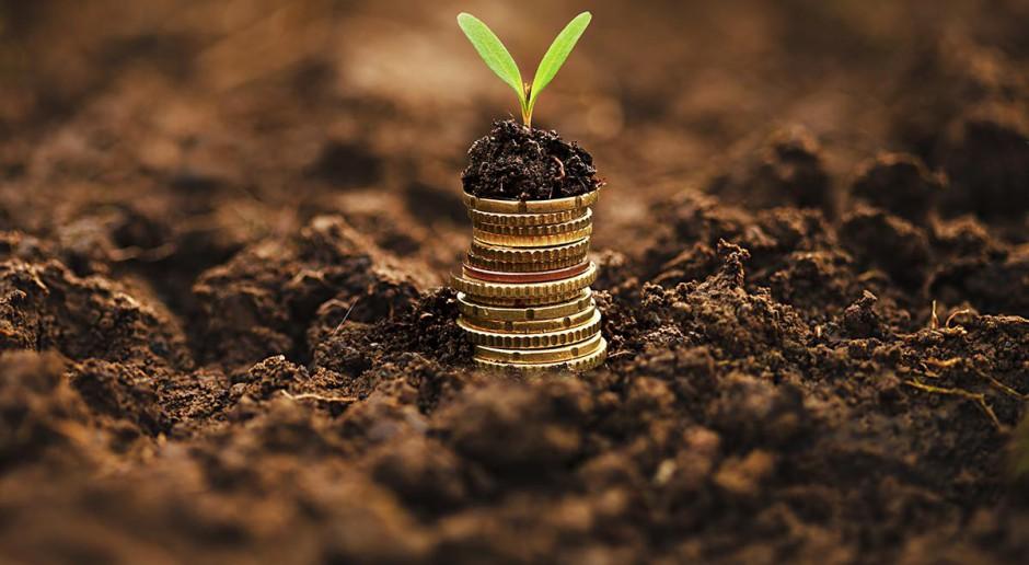 Jaki kredyt na zakup ziemi?