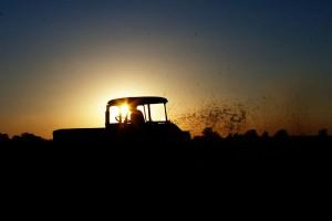 Ekolodzy: nowelizacja ustawy o OZE nie może uderzyć w prosumentów