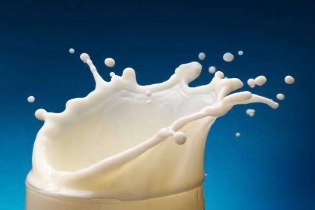 UE: Spadek cen mleka