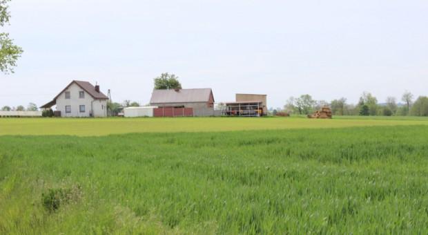 O sprzedaży ziemi  - szybko i tajemniczo