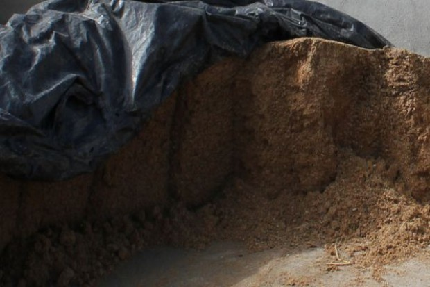 FAO: Rekord światowej podaży śrut oleistych w sezonie 2014/15