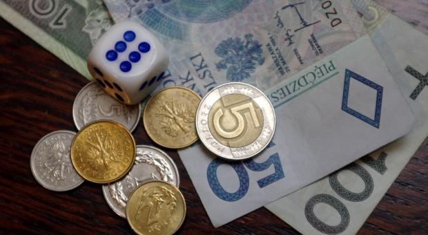 Czy Dolnośląska Izba Rolnicza zwróci 800 tys. zł?