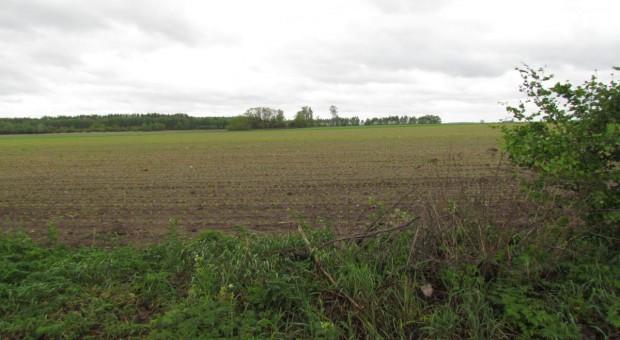 Dlaczego nie można wiedzieć, co KE zarzuca państwom w sprawie sprzedaży ziemi?
