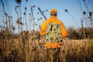 Porozumienie z rolnikami ws. pól niszczonych przez dziki