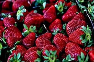 Bronisze: Kończą się truskawki, ceny pomidorów stabilne