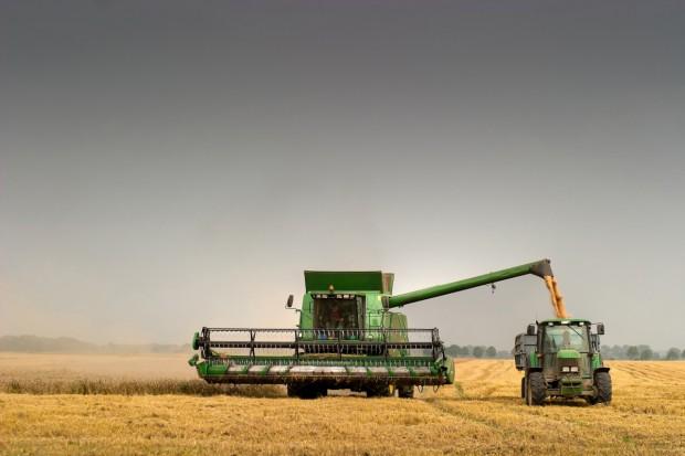 Niemcy: 9 proc. zbóż mniej niż w 2014 r.