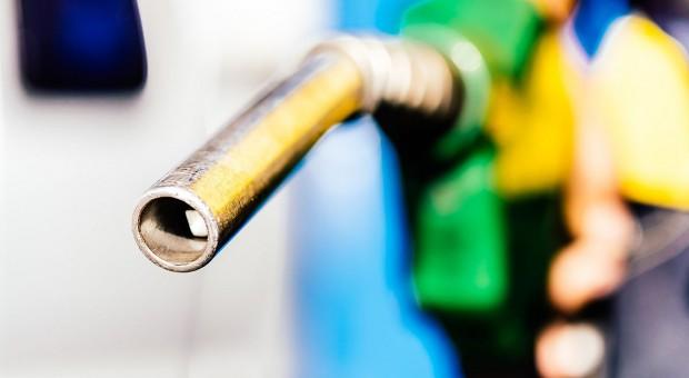 Ile kosztuje olej napędowy w sprzedaży hurtowej?