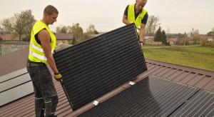 Ardanowski: obszary wiejskie mogą być wielką, zieloną elektrownią