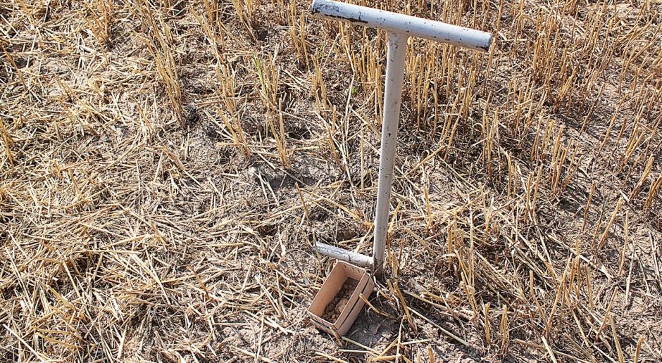 Czas pomyśleć o podstawowych badaniach gleby
