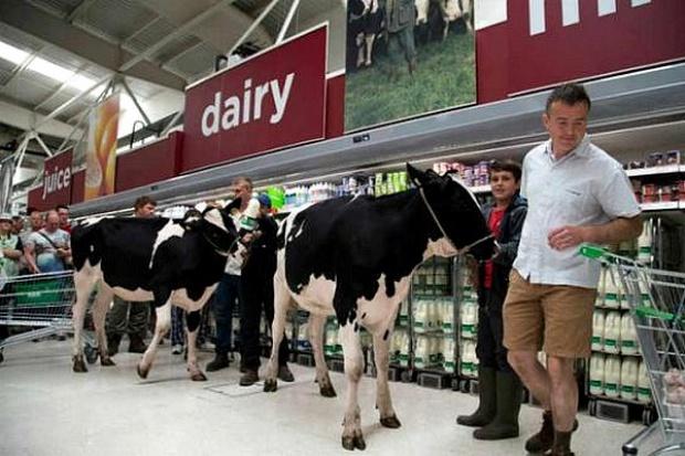 Mleko w supermarkecie prosto od krowy