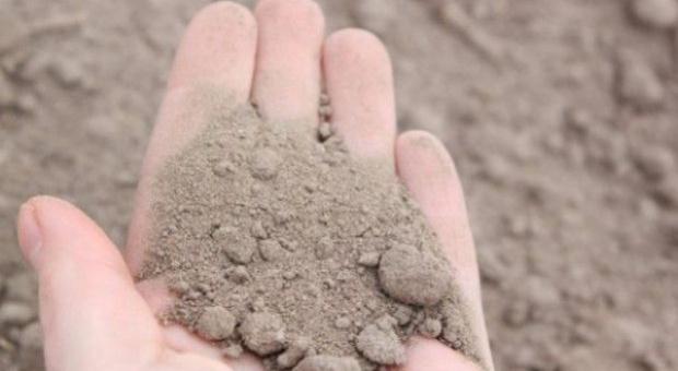 PZPRZ: Problem z przygotowaniem gleby do siewu rzepaku, a także z kukurydzą o wysokim FAO