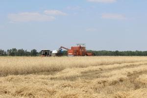 Rząd przyjął uchwałę w sprawie programu pomocy dla rolników