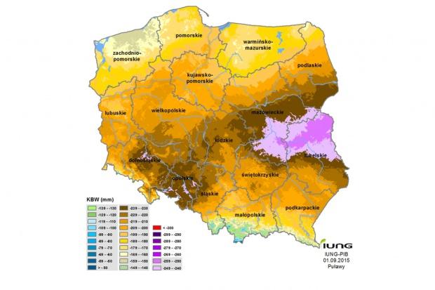 Cała Polska na brązowo – niedobory wody są bardzo widoczne