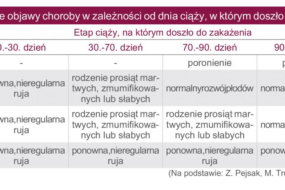 Tabela. Różne objawy choroby w zależności od dnia ciąży, w którym doszło do zakażenia
