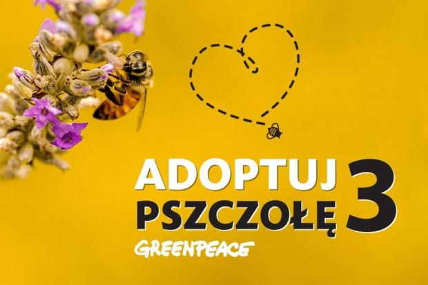 """Rusza trzecia akcja """"Adoptuj pszczołę"""""""