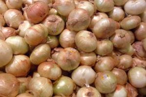 Ceny cebuli w UE są znacznie wyższe niż przed rokiem