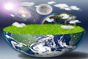 Rolnictwo ekologiczne w liczbach
