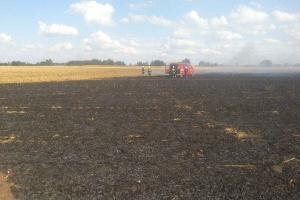 Mulczowanie słomy kukurydzianej - niebezpieczeństwo pożaru