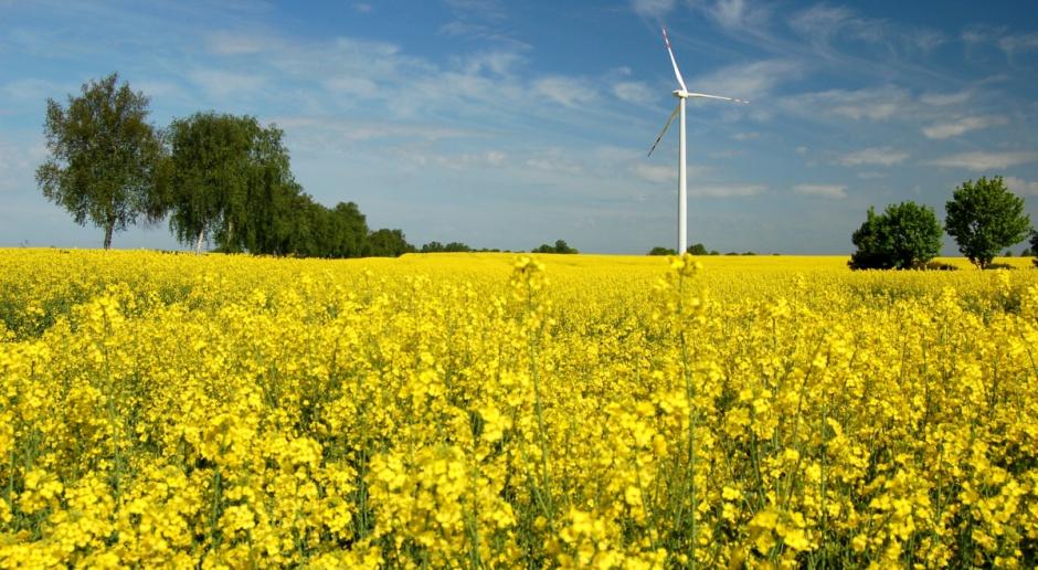 W Karwicach ruszyła farma wiatrowa o mocy 40 MW