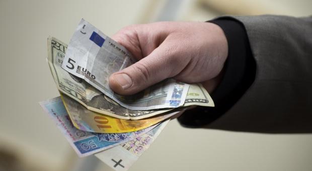 Znamy kurs euro do dopłat