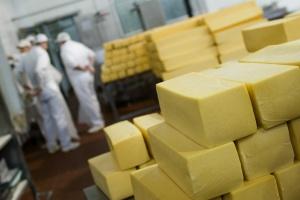 Zainteresowanie mechanizmami interwencyjnymi na rynku mleka