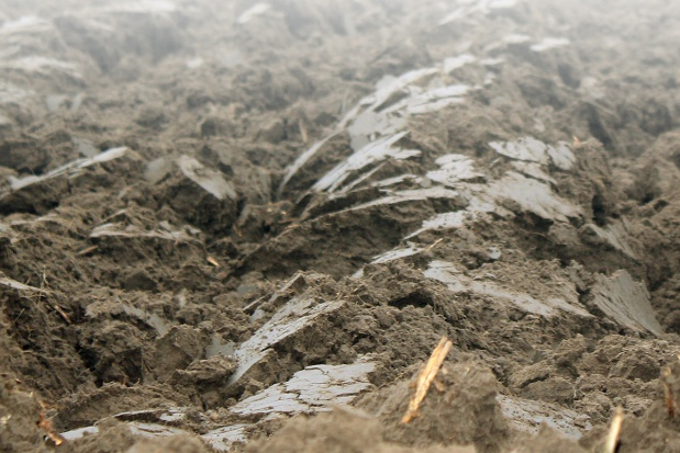 Odczyn gleby a efektywność nawożenia mineralnego