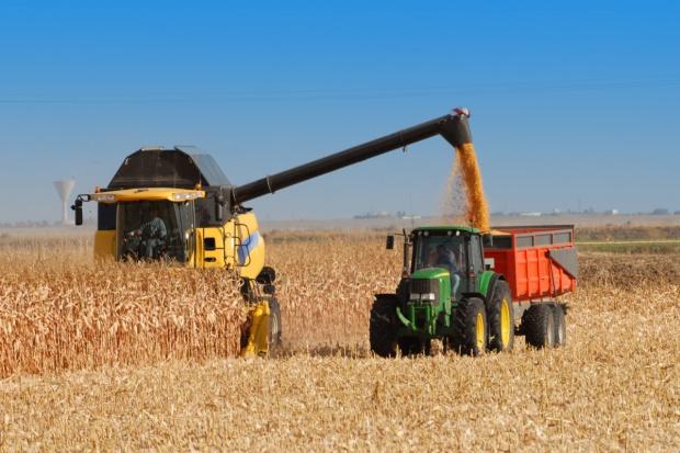 Ukraina: Własne rolnictwo zapewni bezpieczeństwo żywnościowe