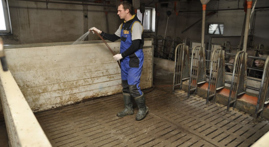 Ruszy refundacja kosztów bioasekuracji dla rolników z Podlasia
