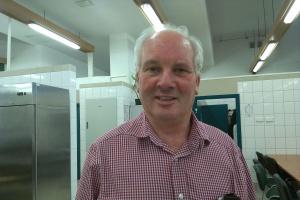Ekspert: W polskim sektorze wołowym należy wiele poprawić