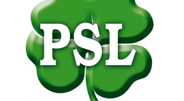"""Czy wynik PSL to klęska? """"Liczymy, że będzie trochę lepiej"""""""