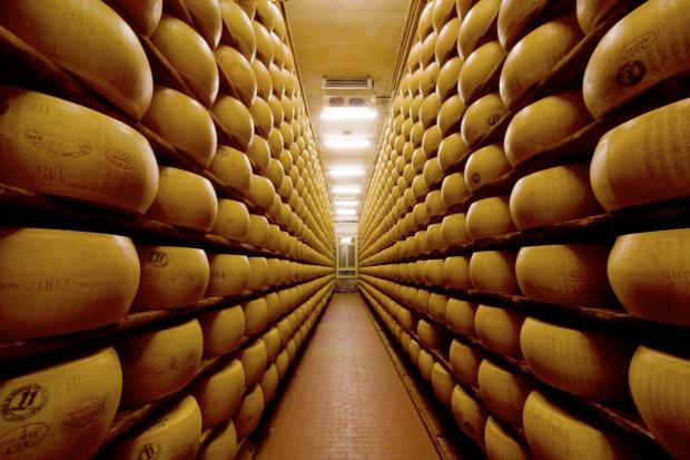 Prywatne przechowywanie serów