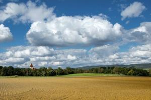 Wstrzymane przetargi na kupno i dzierżawę ziemi od ANR