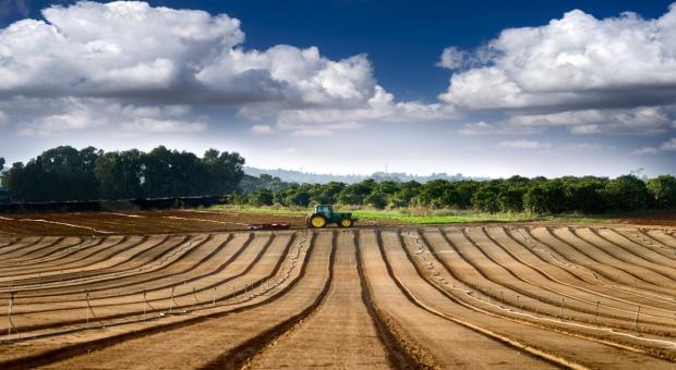 Co roku na świecie ubywa 10 mln hektarów gruntów ornych